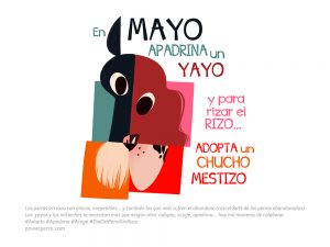 mayo calendario power perro