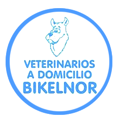 Bikelnor