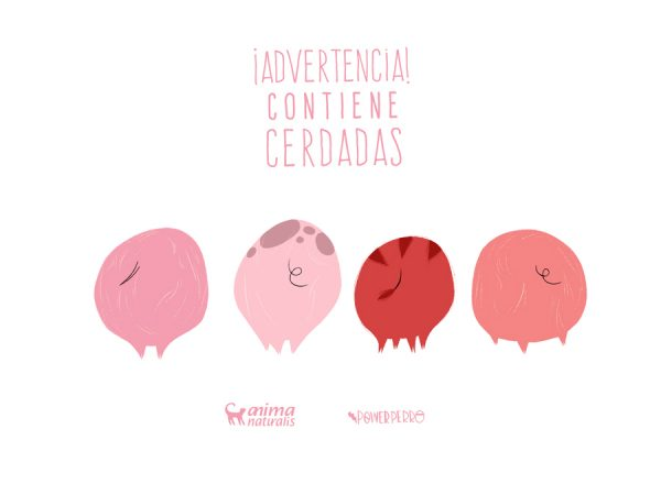 Advertencia: cerdadas