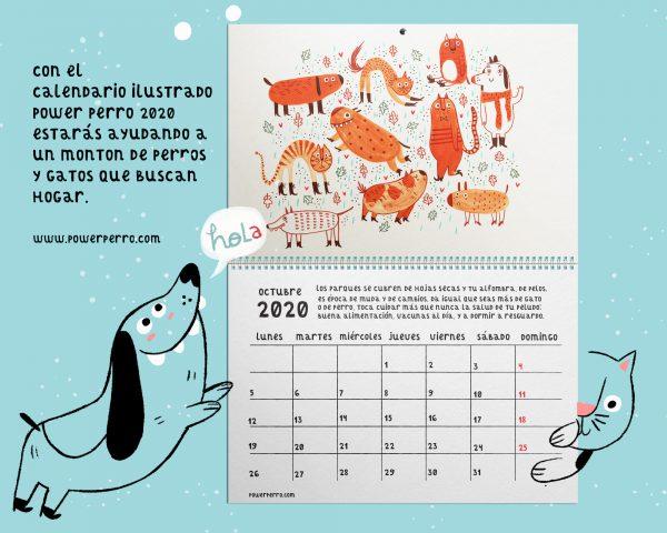 calendario solidario ilustrado perros y gatos